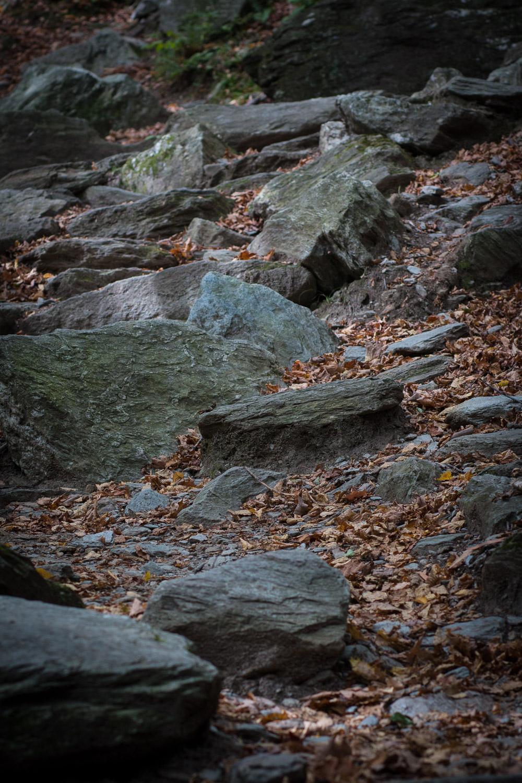 Hiking in Vermont    Linden & Lavender