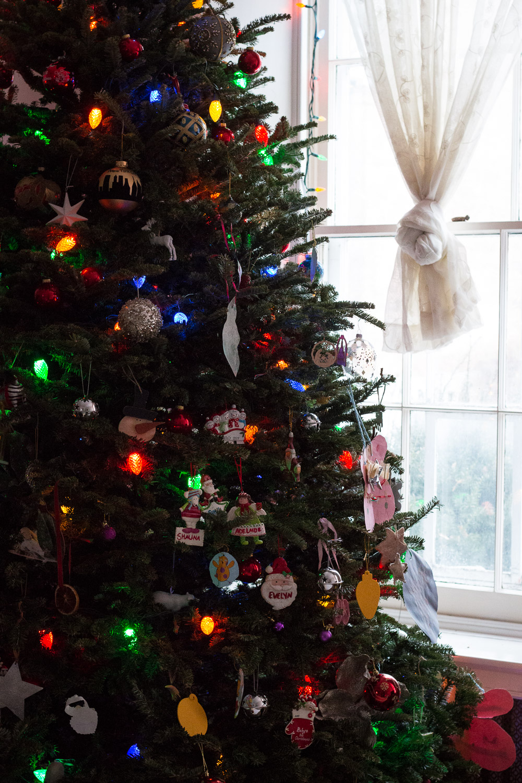 Christmas Tree  | Linden & Lavender
