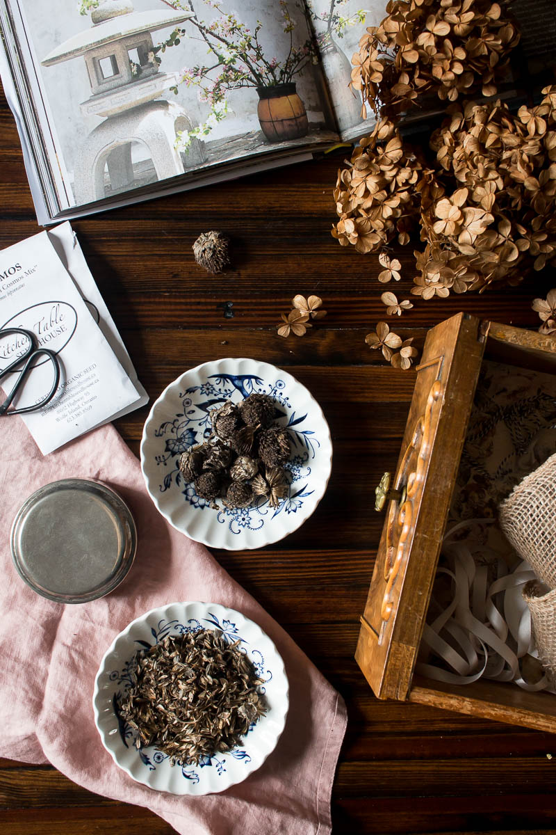 Seeds and things for Spring | Linden & Lavender