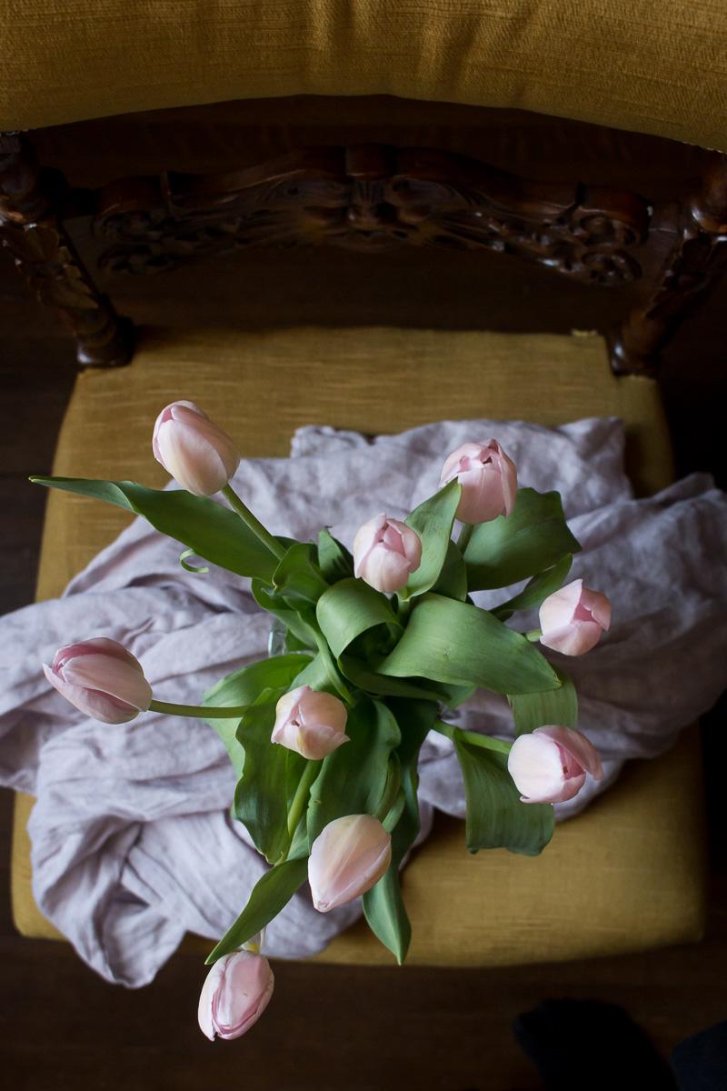 Pink Tulips | Linden & Lavender