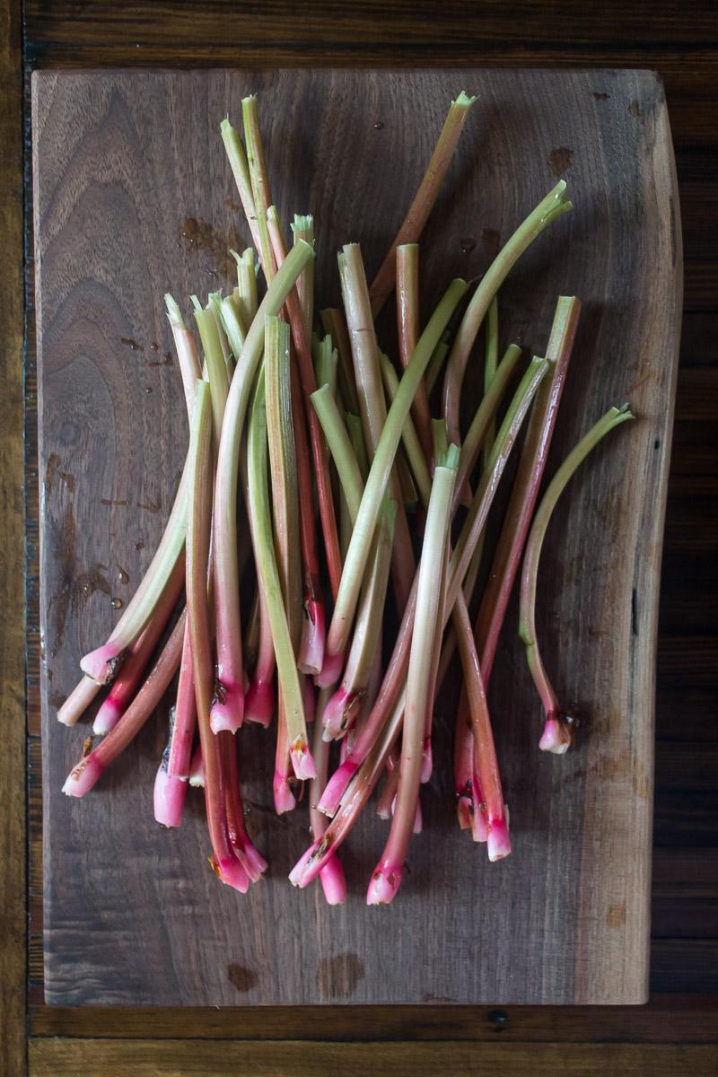 Rhubarb | Linden & Lavender