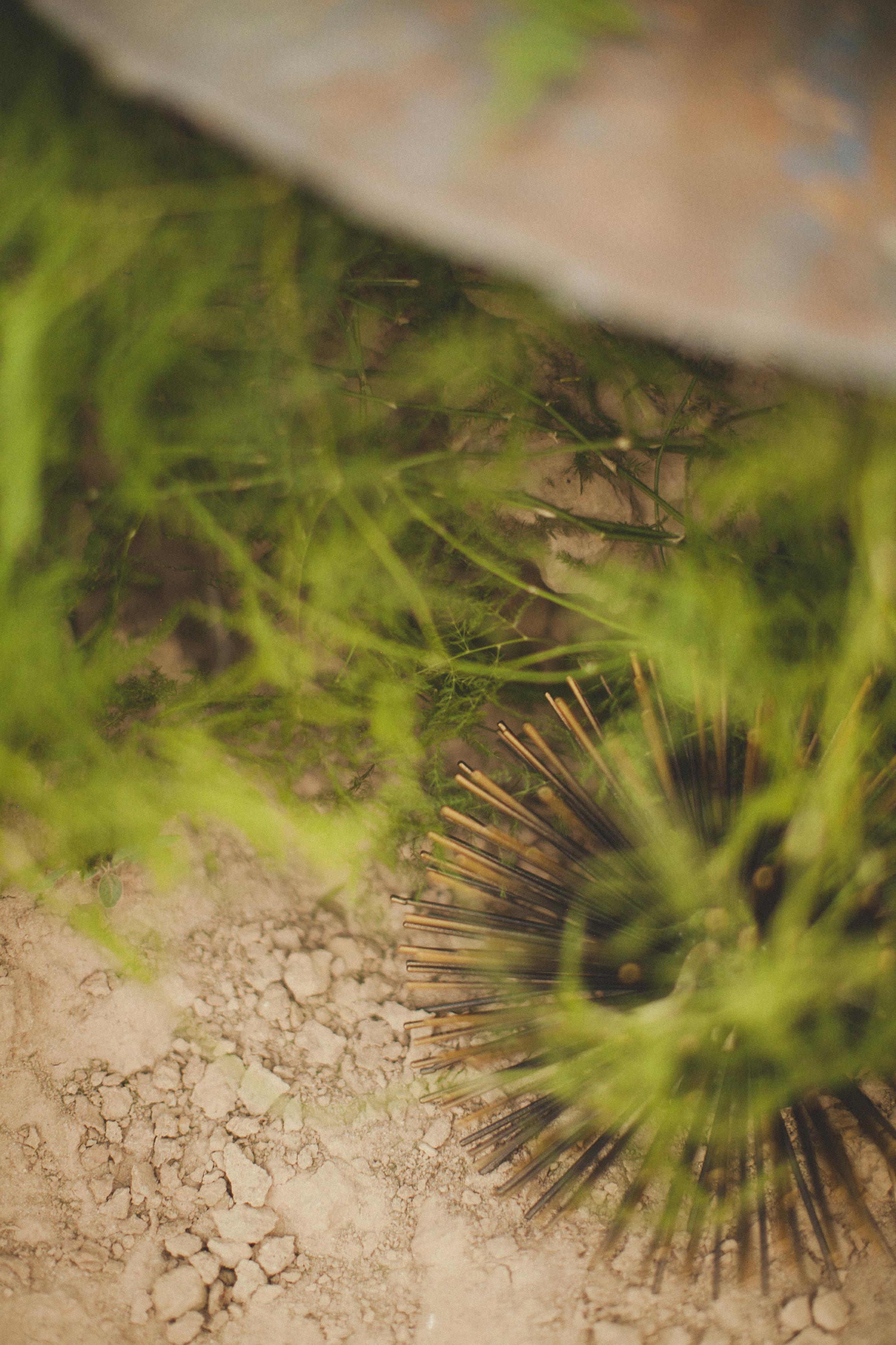 Eco-Industrial-1057.jpg