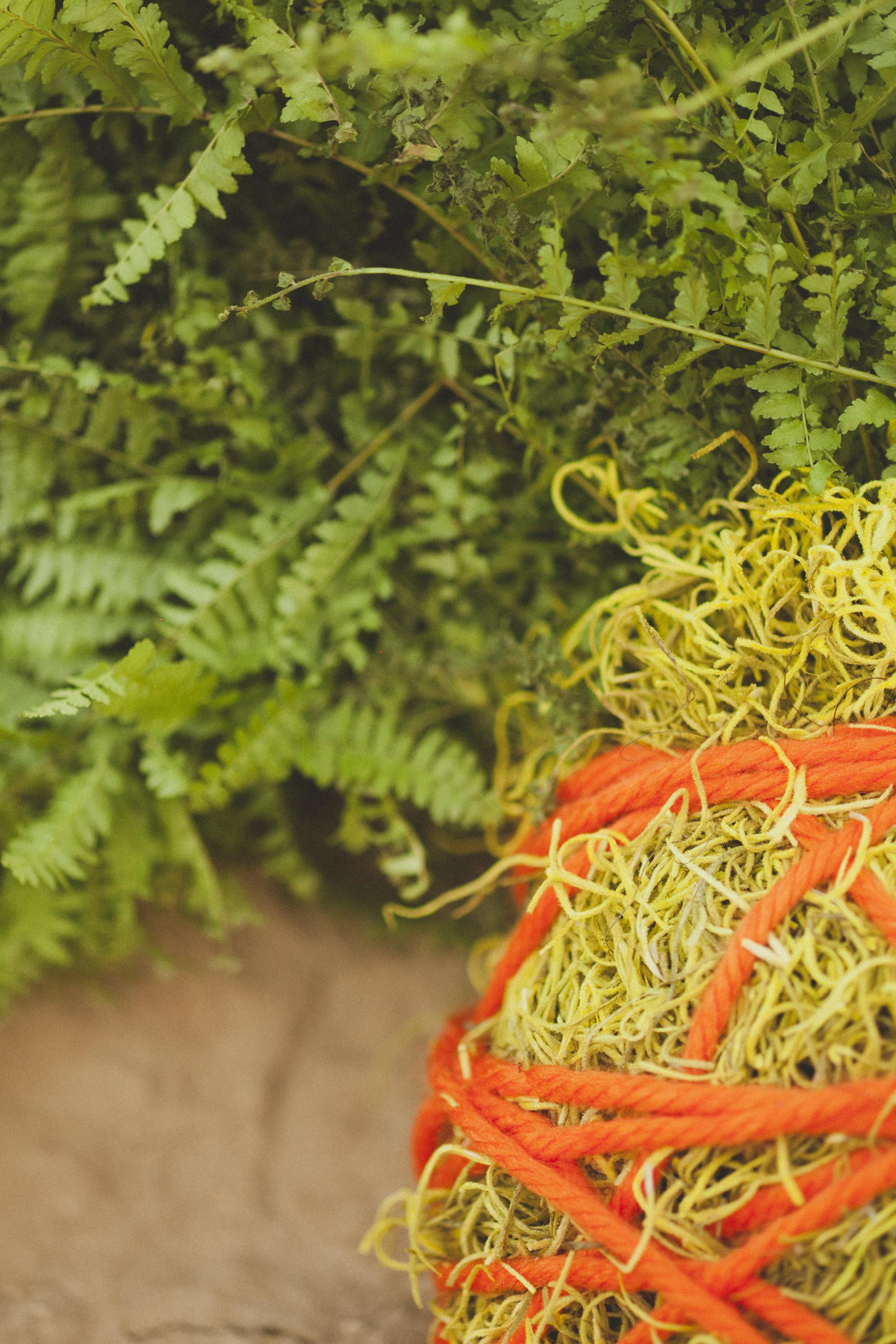 Eco-Industrial-1064.jpg