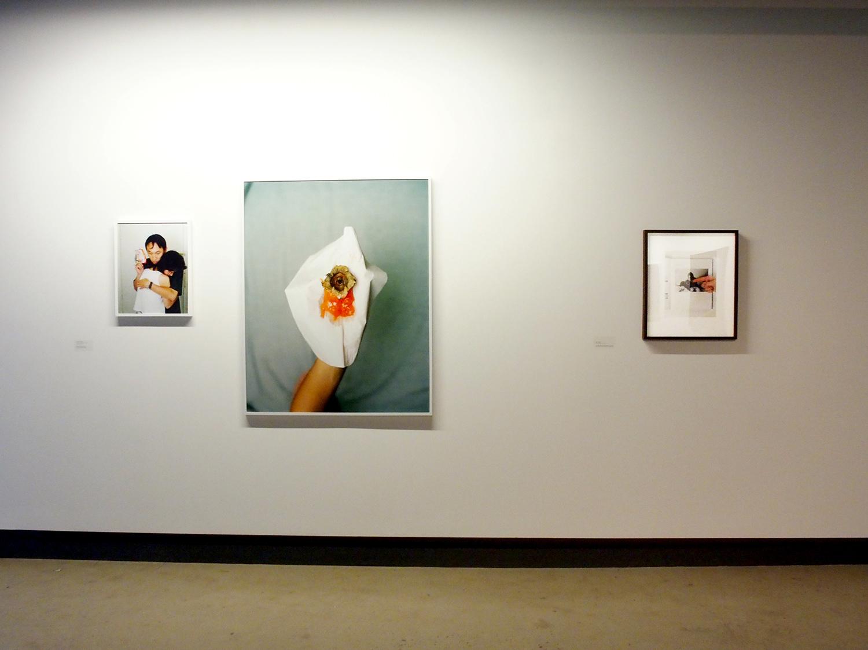 © Vue de l'exposition  Home Sweet Home. À propos de l'inquiétude (2014). Photo : Dazibao.
