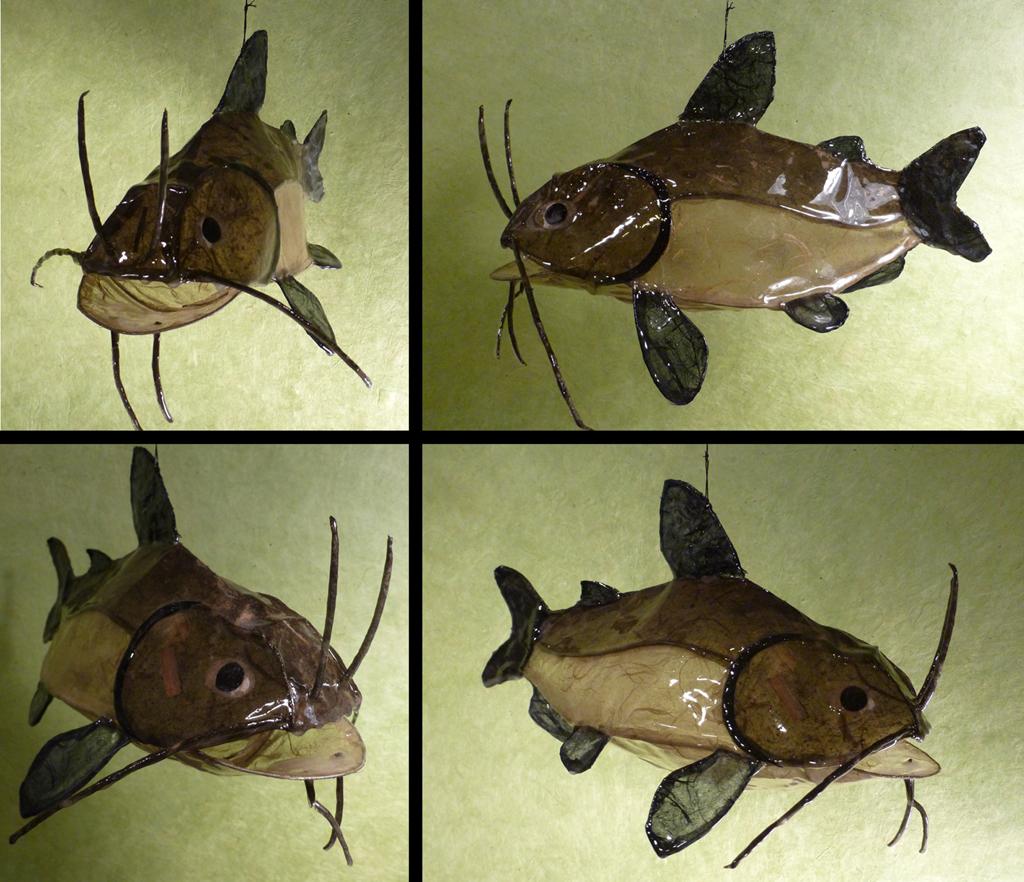 catfish, 2014