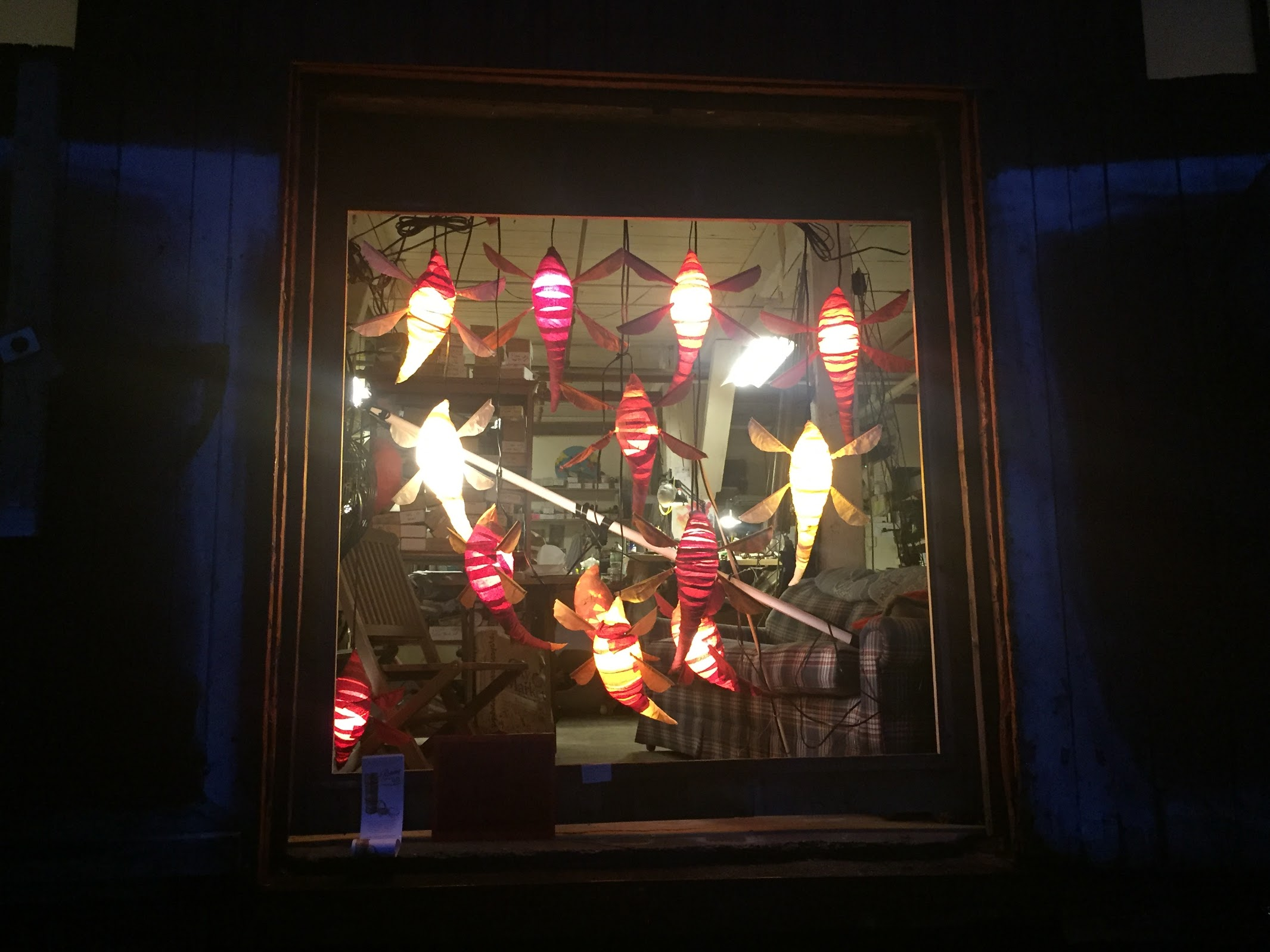 chrysalis_window_night.JPG