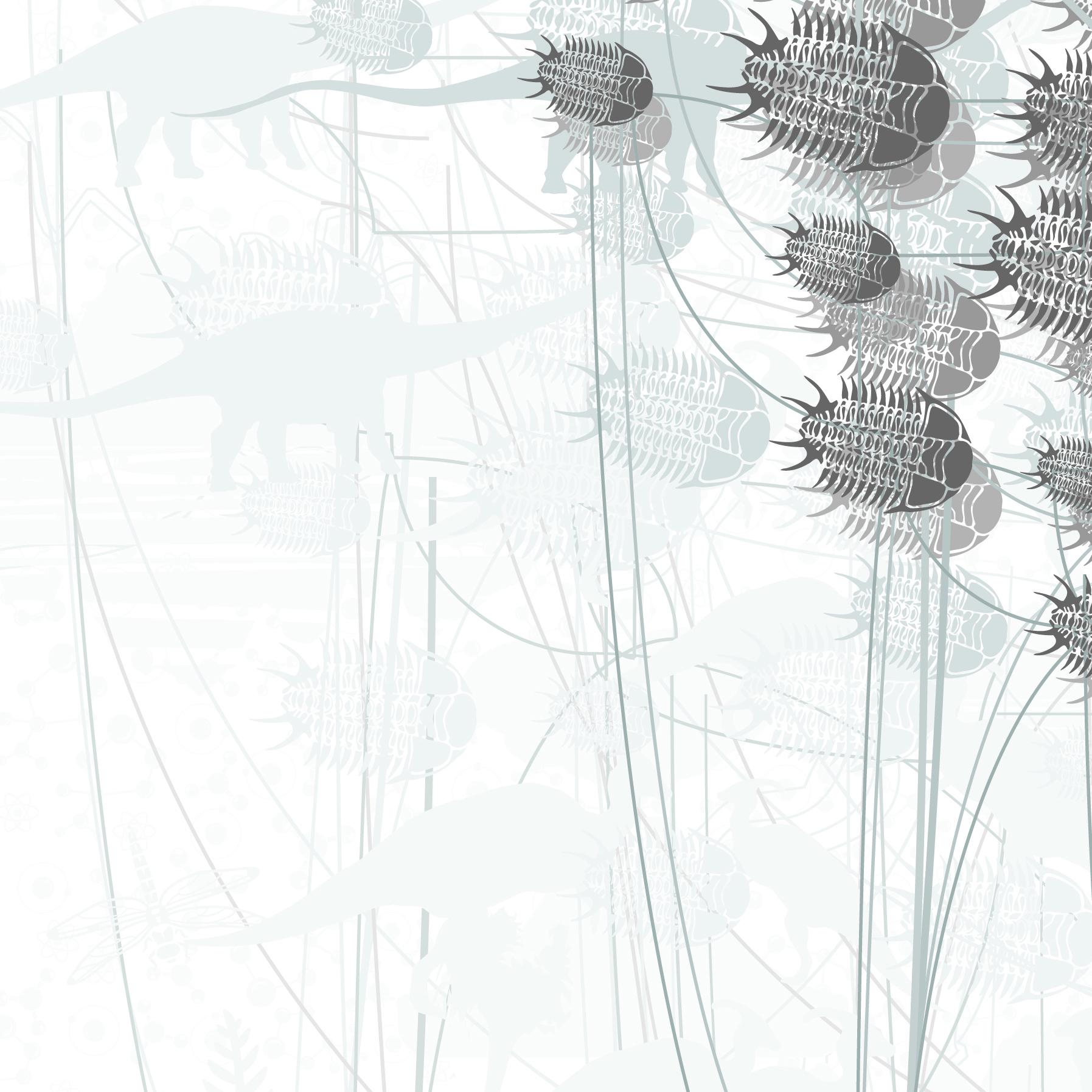 meshclipped2.jpg
