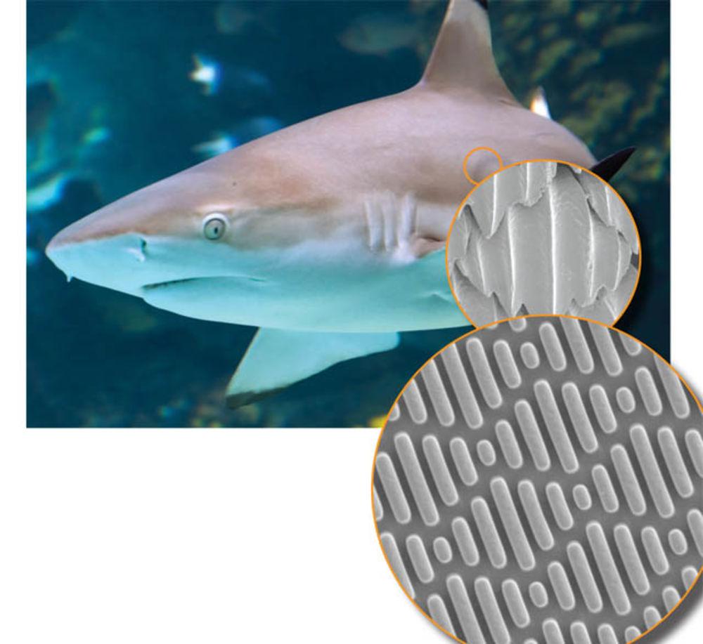Image credit:  Sharklet technologies