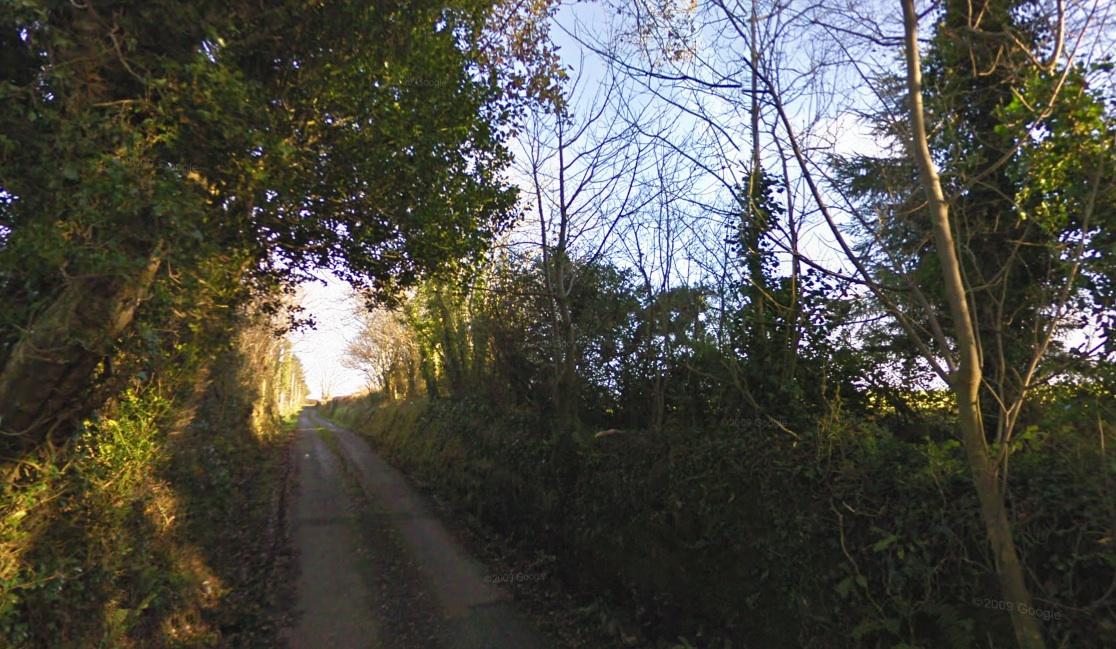 Woods in Garryantanvally, County Kerry, Ireland, November 2009 (Google Maps Street View)