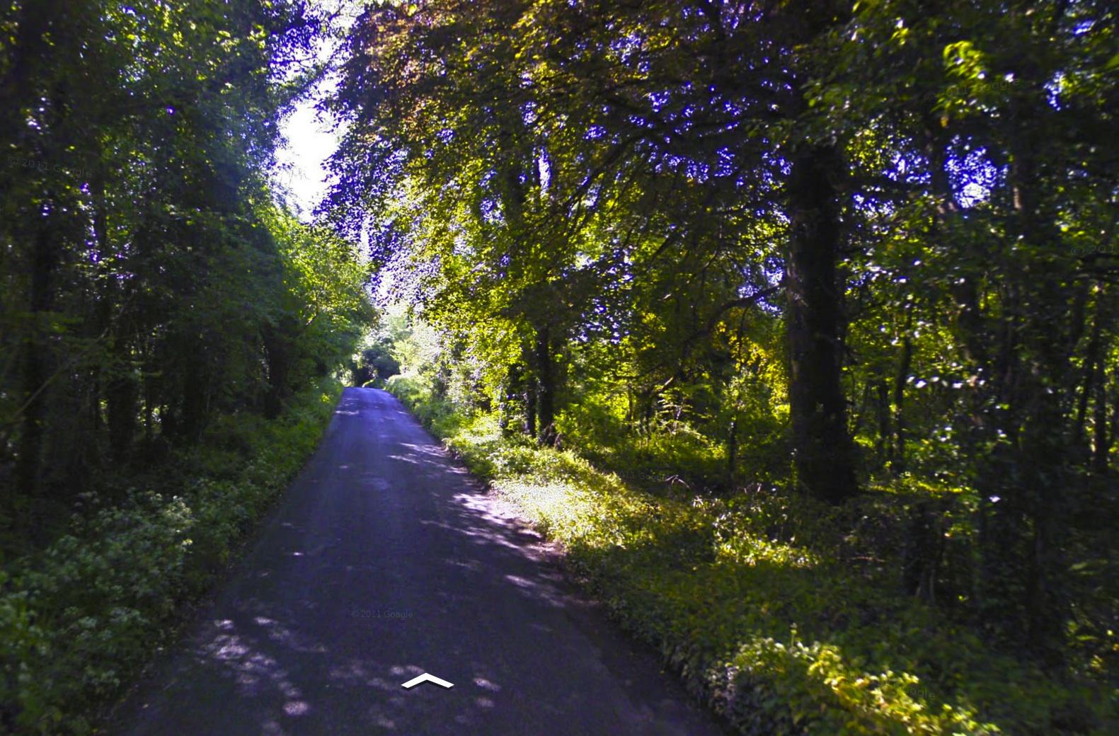 Cratloe Woods, June 2009 (Google Maps Street View)