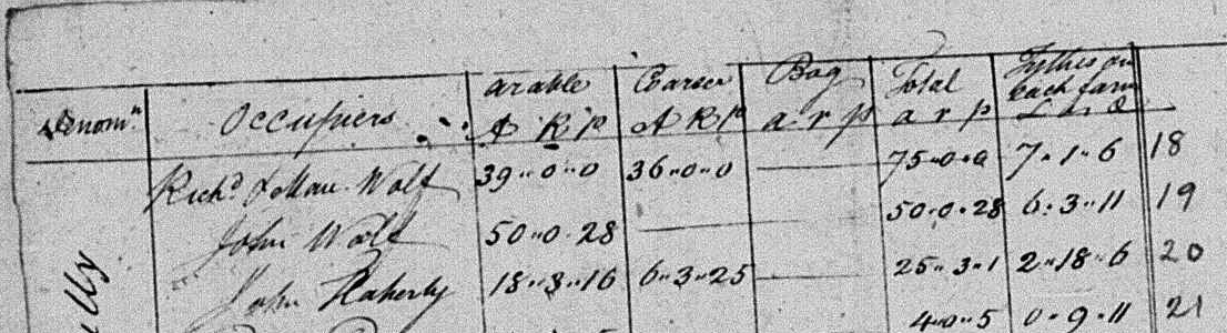 Detail from a tax assessment, 1825, Garryantanvally (Townland), Finuge (Parish), County Kerry, showing the names Richard (James?) Wolfe and John Wolfe