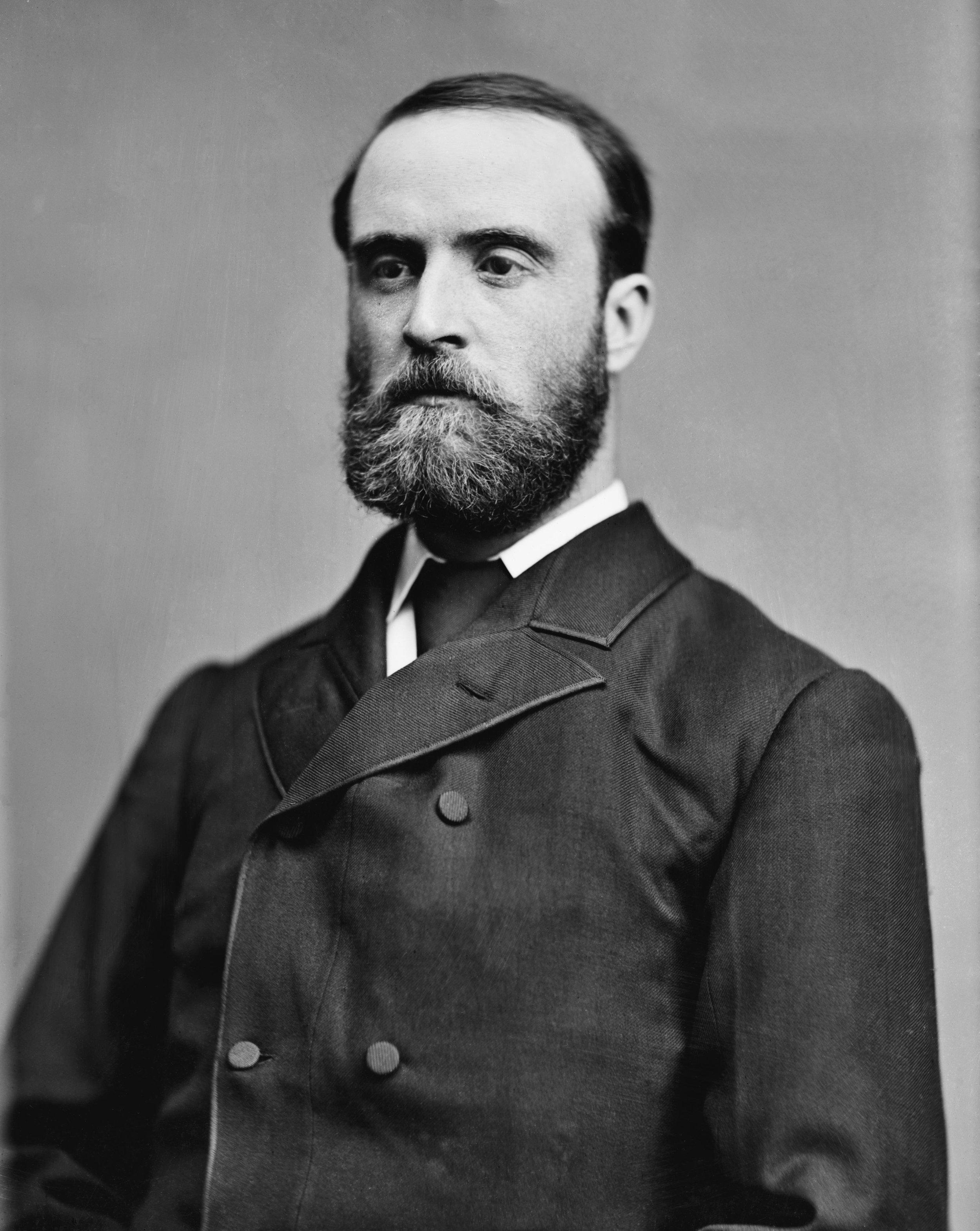 Charles Stewart Parnell (Mathew Brady/Library of Congress)
