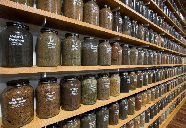 Jars containing soil from the sites of confirmed lynchings in the state of Alabama (  source  )
