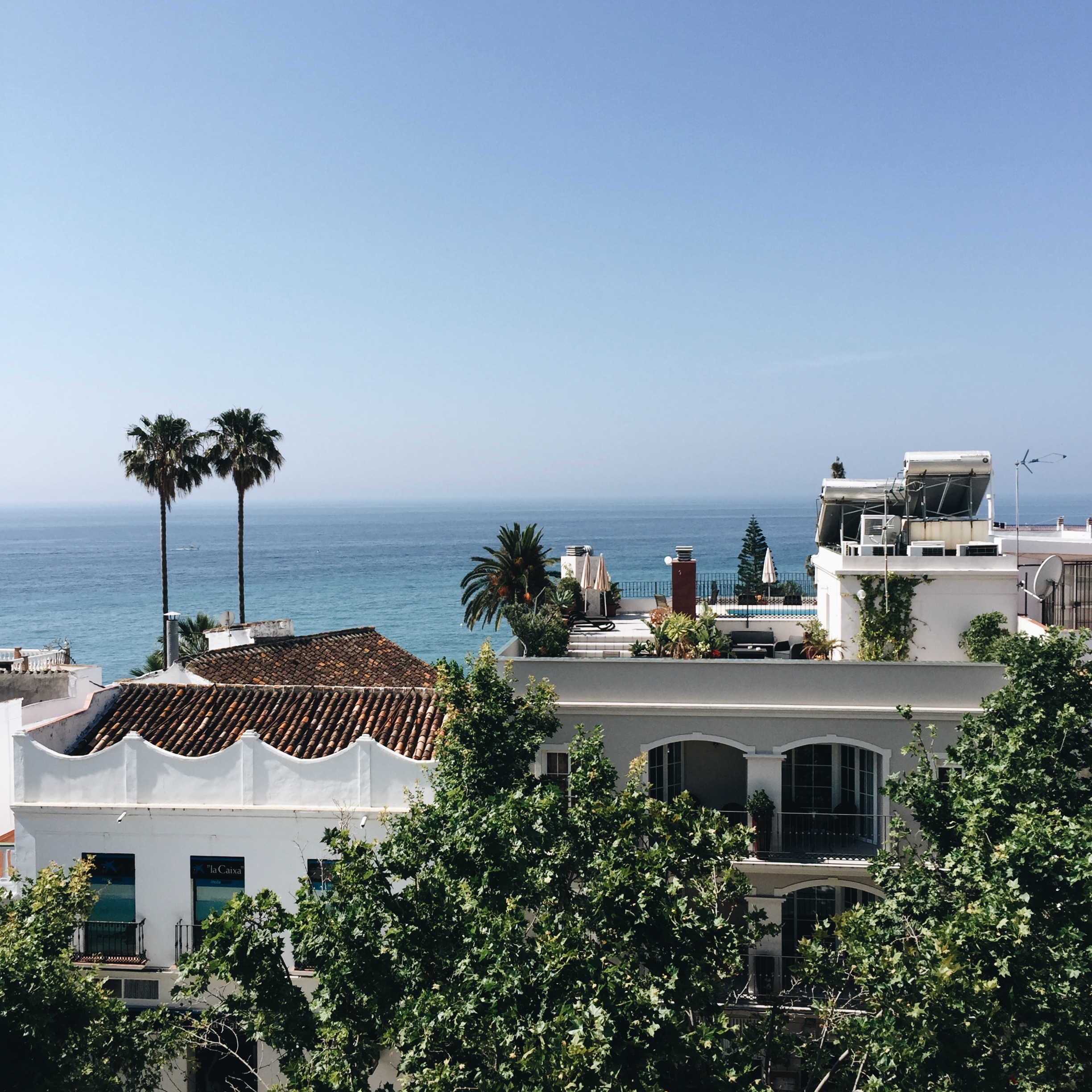 THE VIEW FROM THE ROOF POOL AT HOTEL PLAZA CAVANA