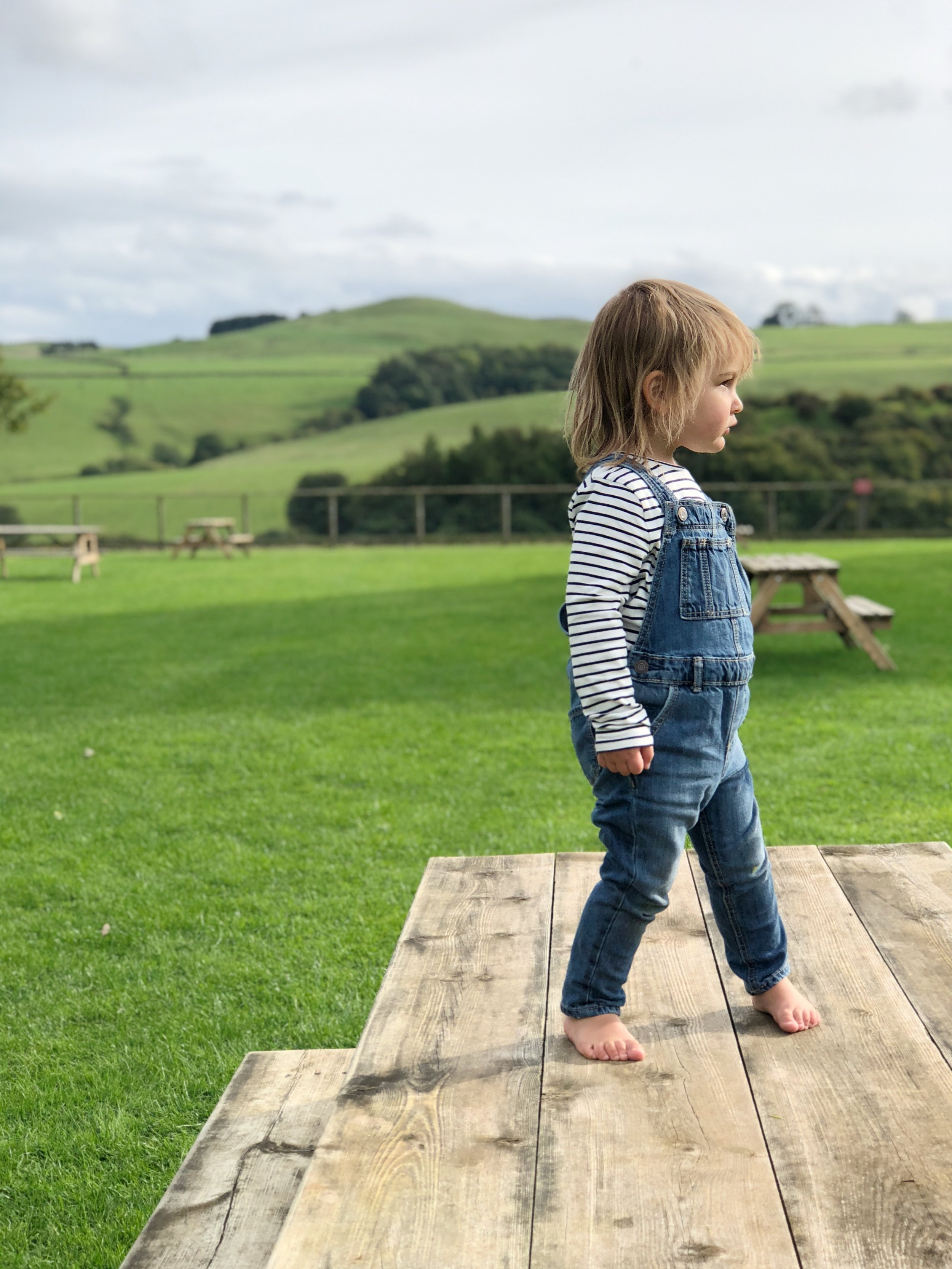 My wild Willa soaking up the beauty of the English countryside.