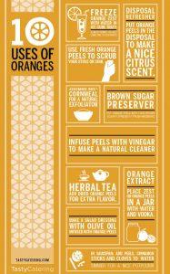 orange-infographic