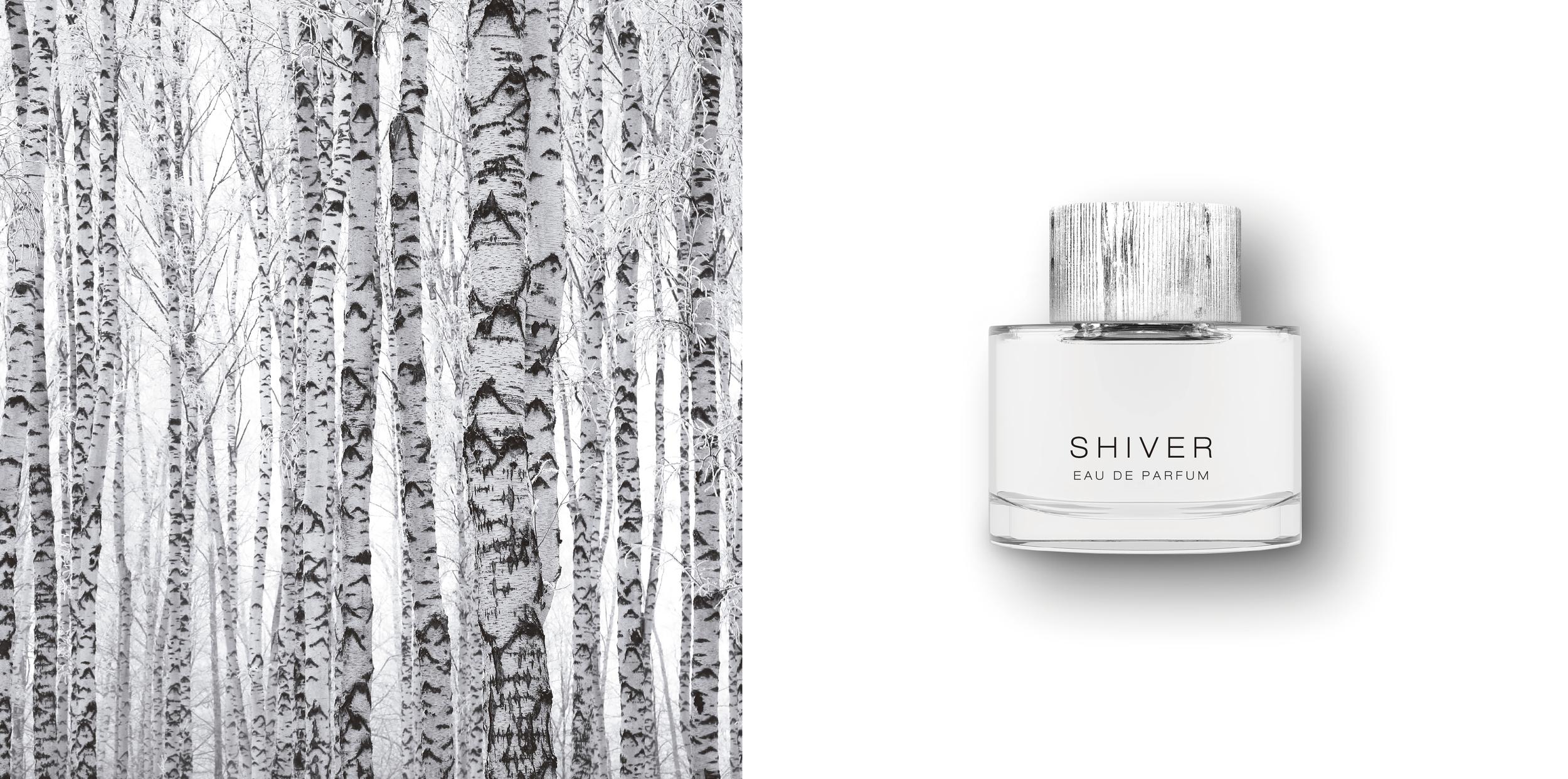 'Shiver', Concept Design.