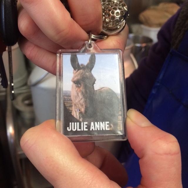 Donkey Key Chain.JPG