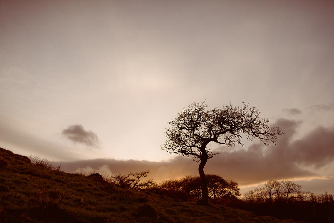 creative scottish wedding photographer natural landscape glasgow