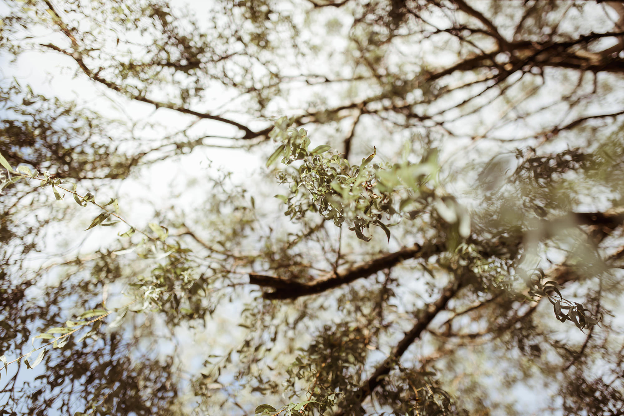 natural weddings greenock
