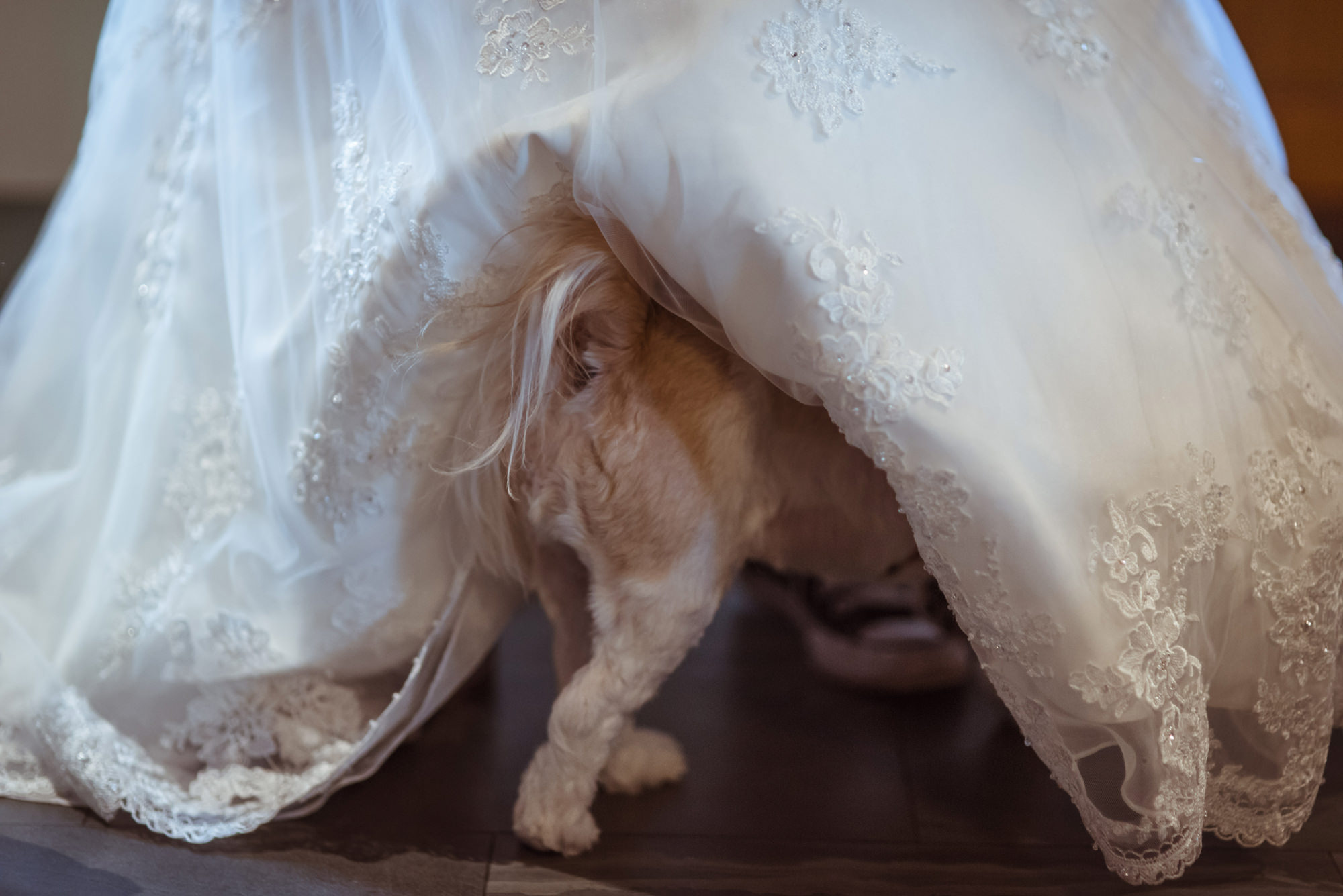 funny-wedding-photographs-glasgow.jpg