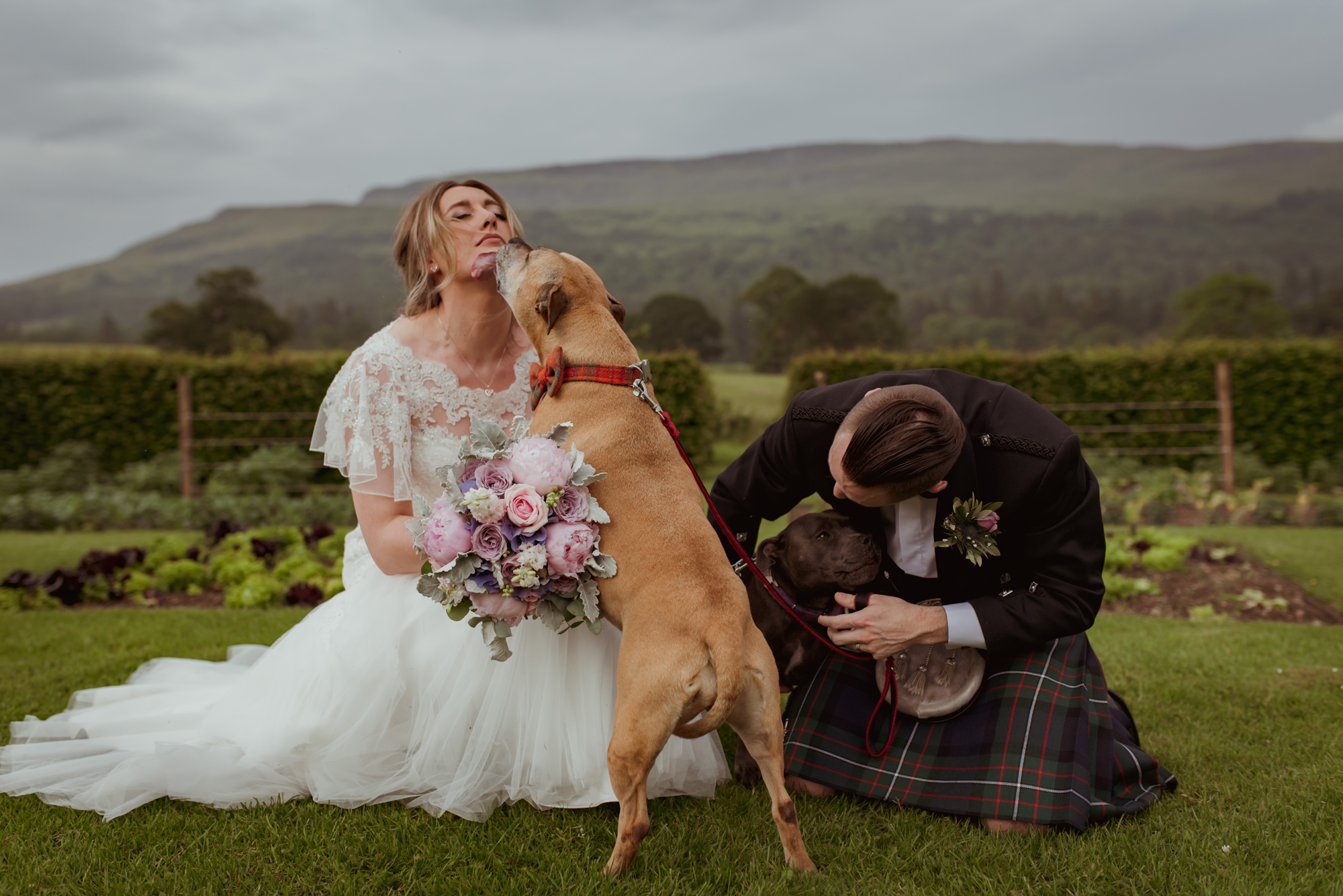 pet-friendly-wedding-venue.jpg