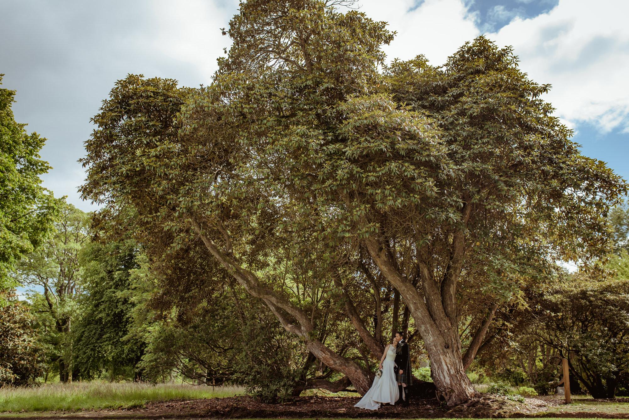 mount-stuart-wedding-photographe.jpg