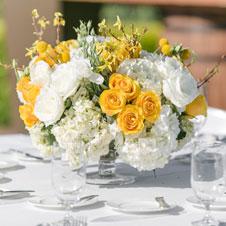 Yellow.White-flowers.jpg