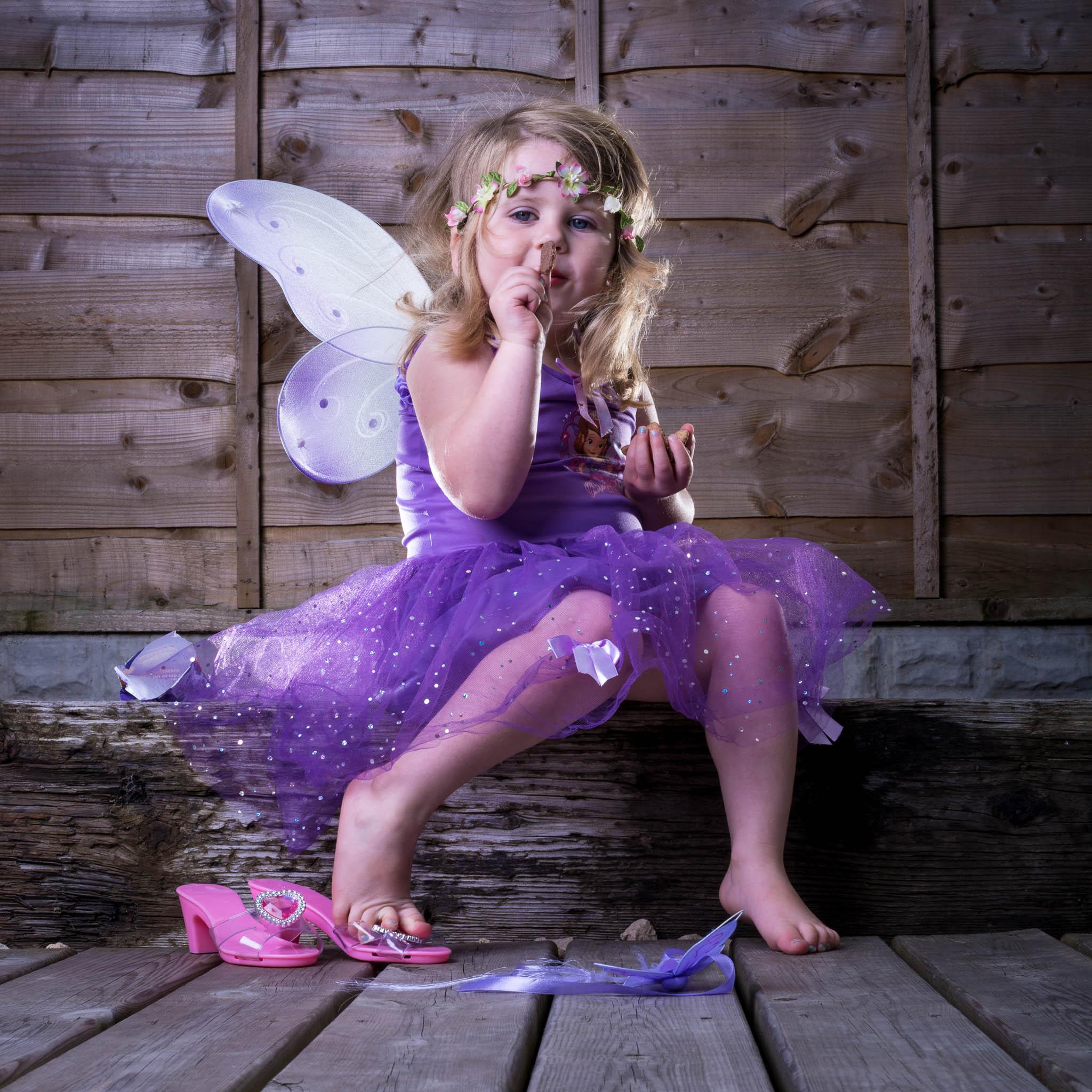 The Little Fairy -