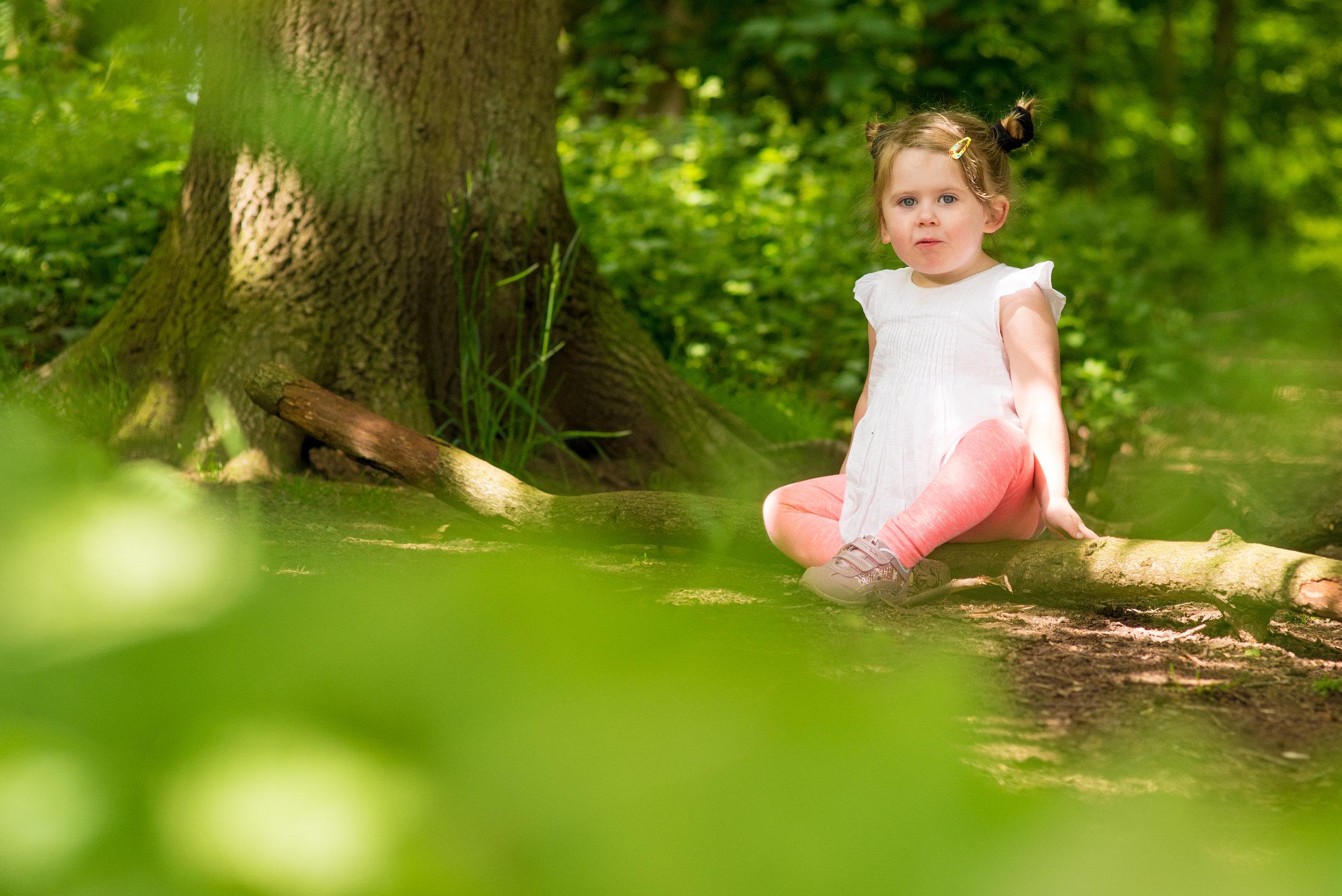 Woodland Adventure - Clumber Park