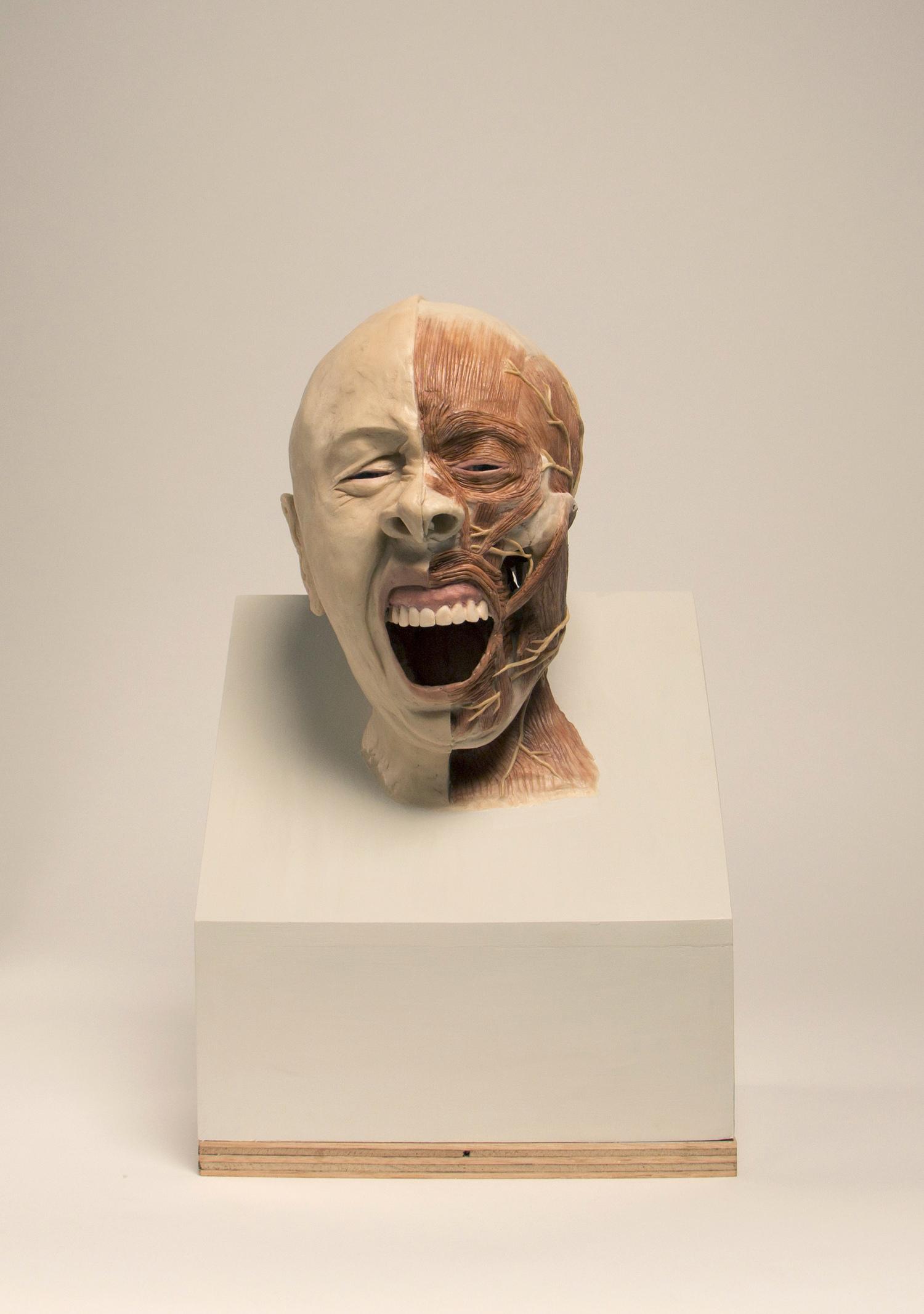 skull+yawnlightish.jpg
