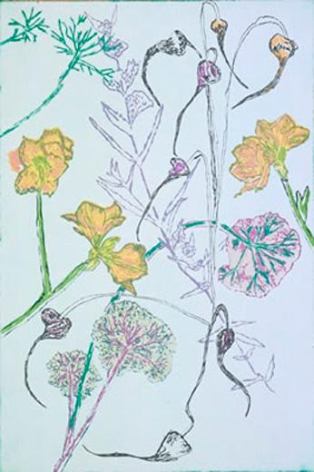Botanical Banter
