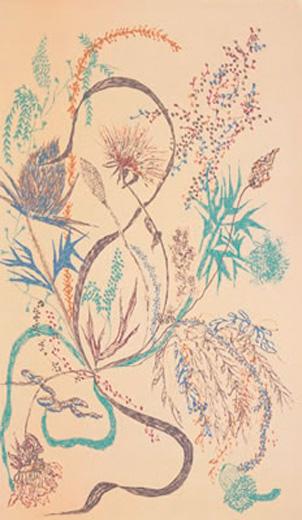 Wayside Flora IV