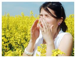 Allergy desensitisation - 15 minutes $25Half hour $50