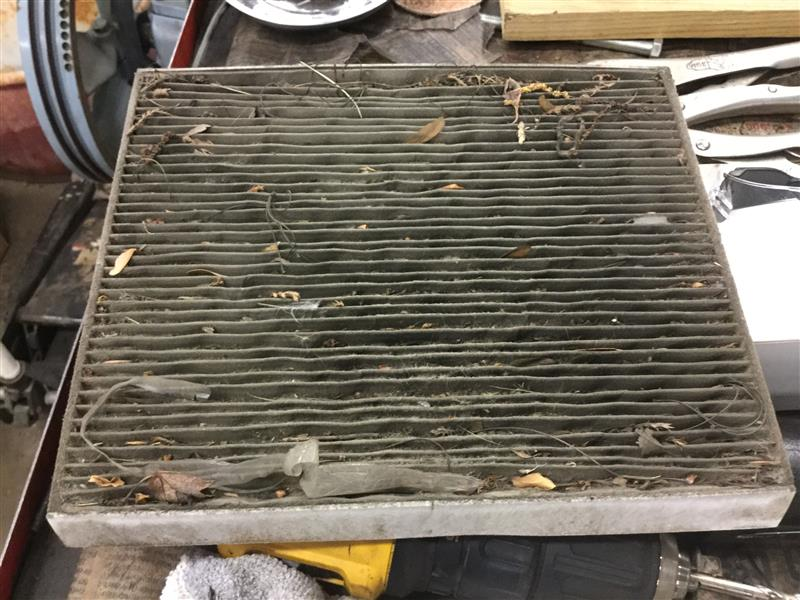 Cabin air filters are out of sight and easily forgotten. -