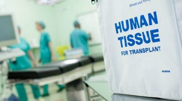 transplant-bag.jpg