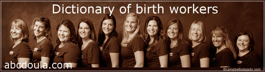 Team of ABC Postpartum Doulas circa 2010. Just one option in the world of care for new families, but a role not to be overlooked!