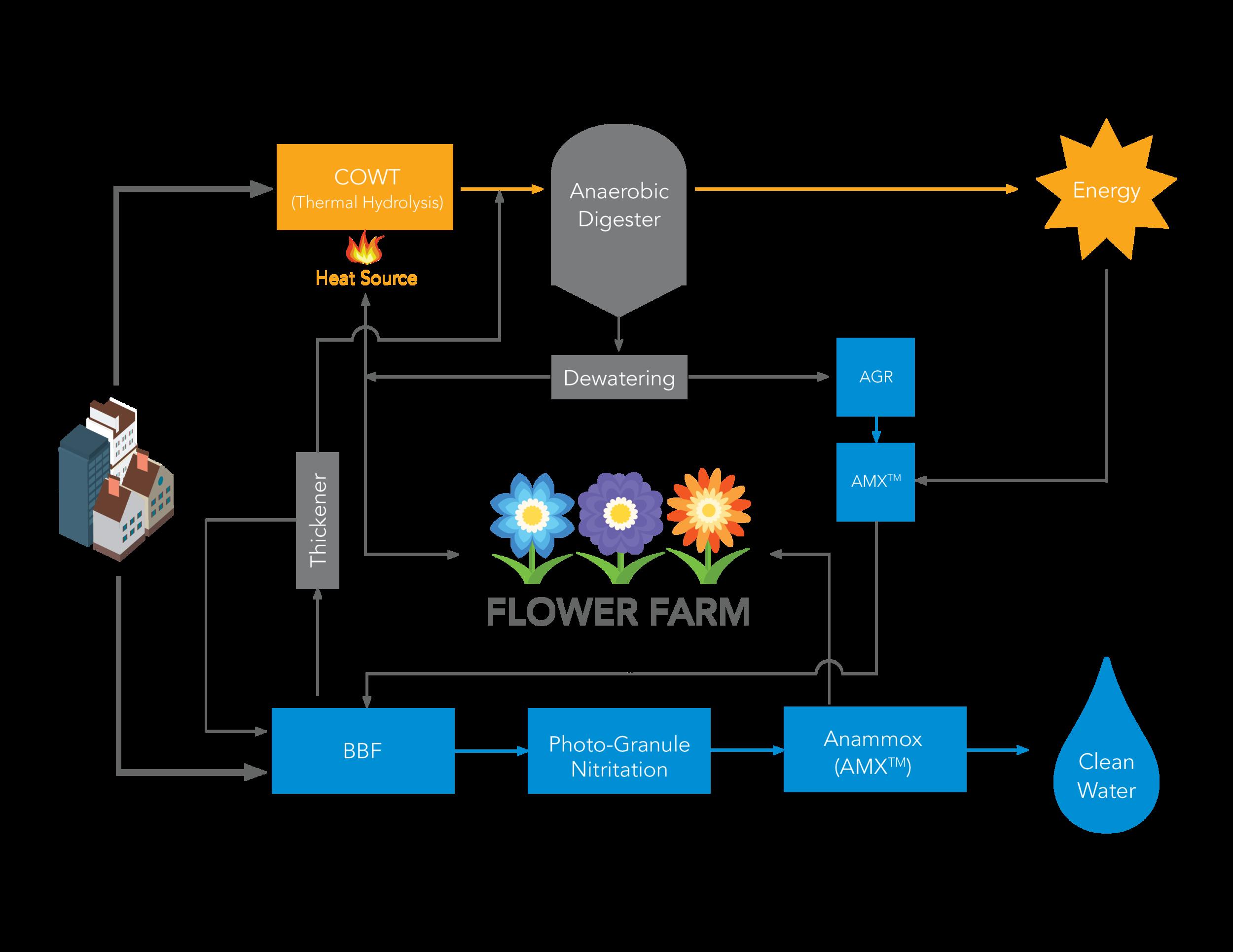 TWF process diagram ver5.png