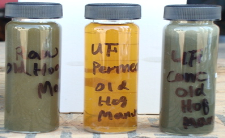 Anaerobic digestate treatment: Raw digestate (left), filtrate (center), and concentrate (right)