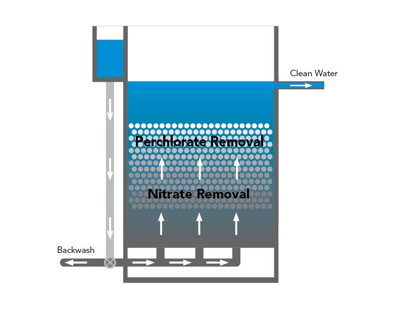 bbf groundwater.jpg