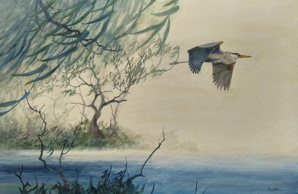 Heron Flying1000.jpg