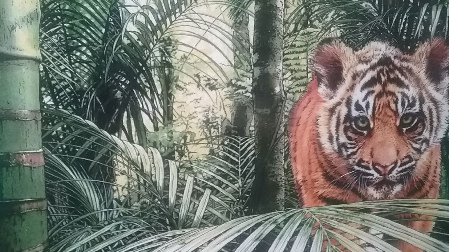 Tiger Cub Cropped.jpg