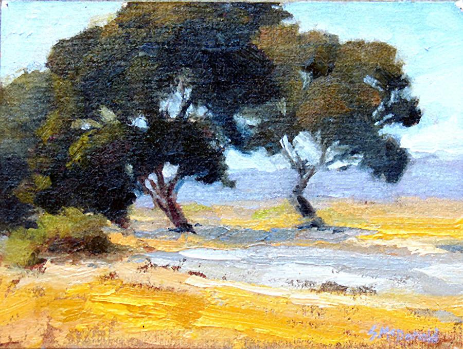 Baylands Bay Trees.jpg