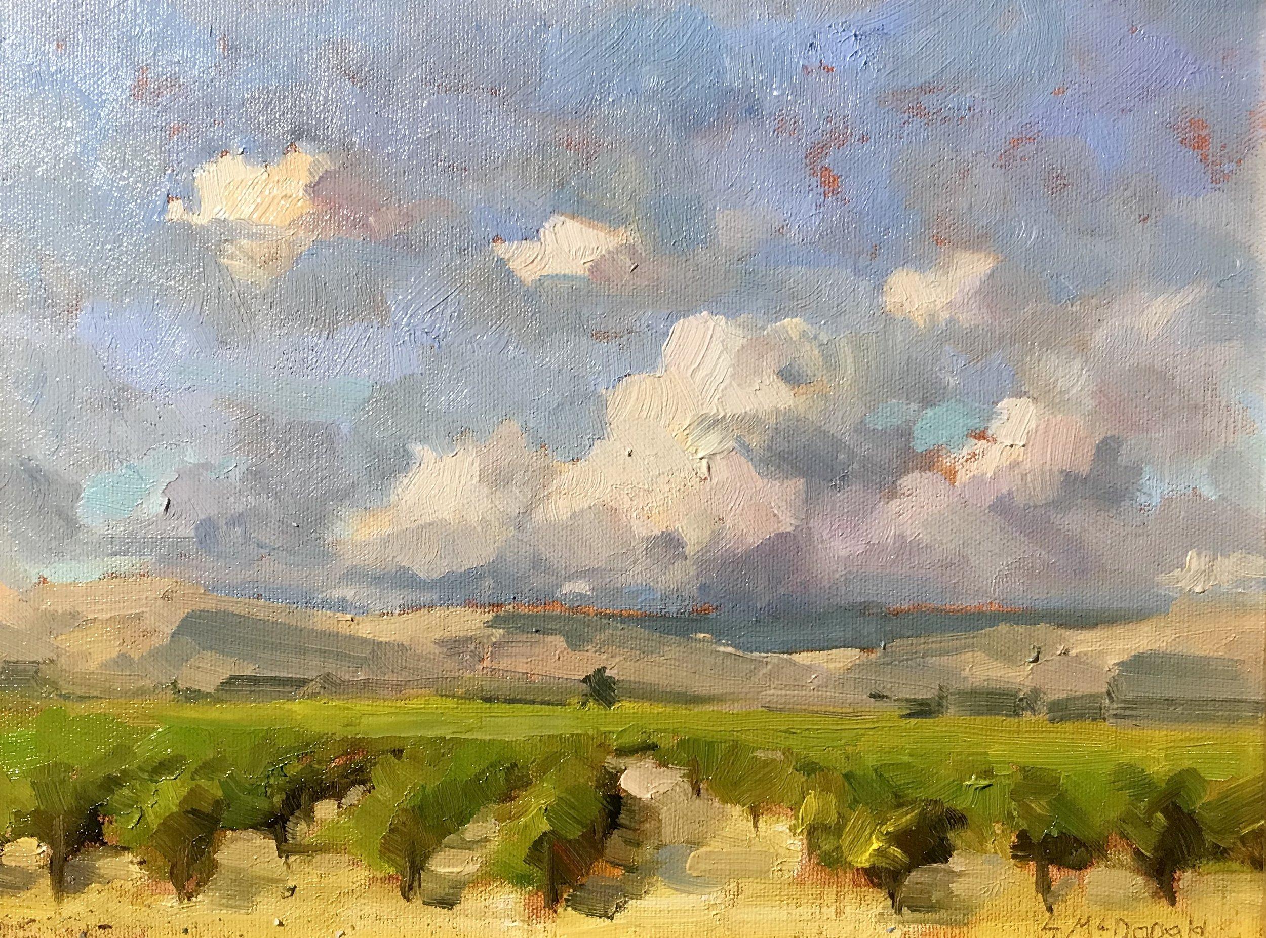 California Vines.jpg