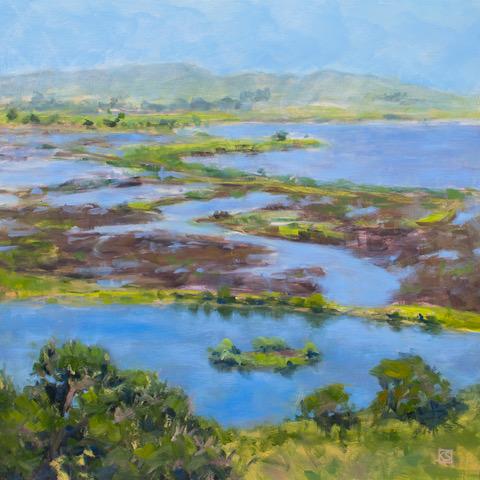 Sonoma Marshland by Kerima Swain.jpeg