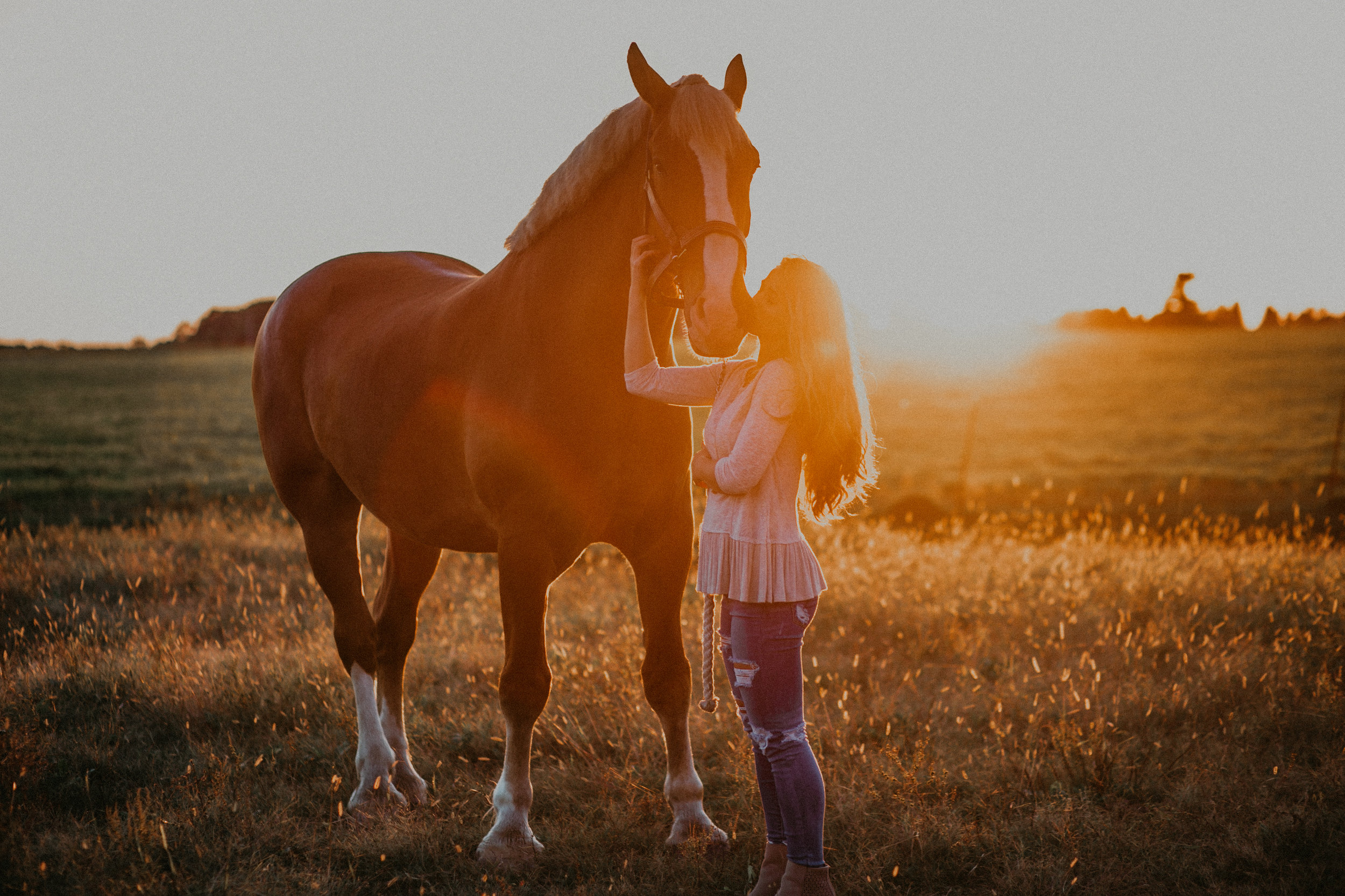sunset-senior-photos-horse-equestrian-photographer