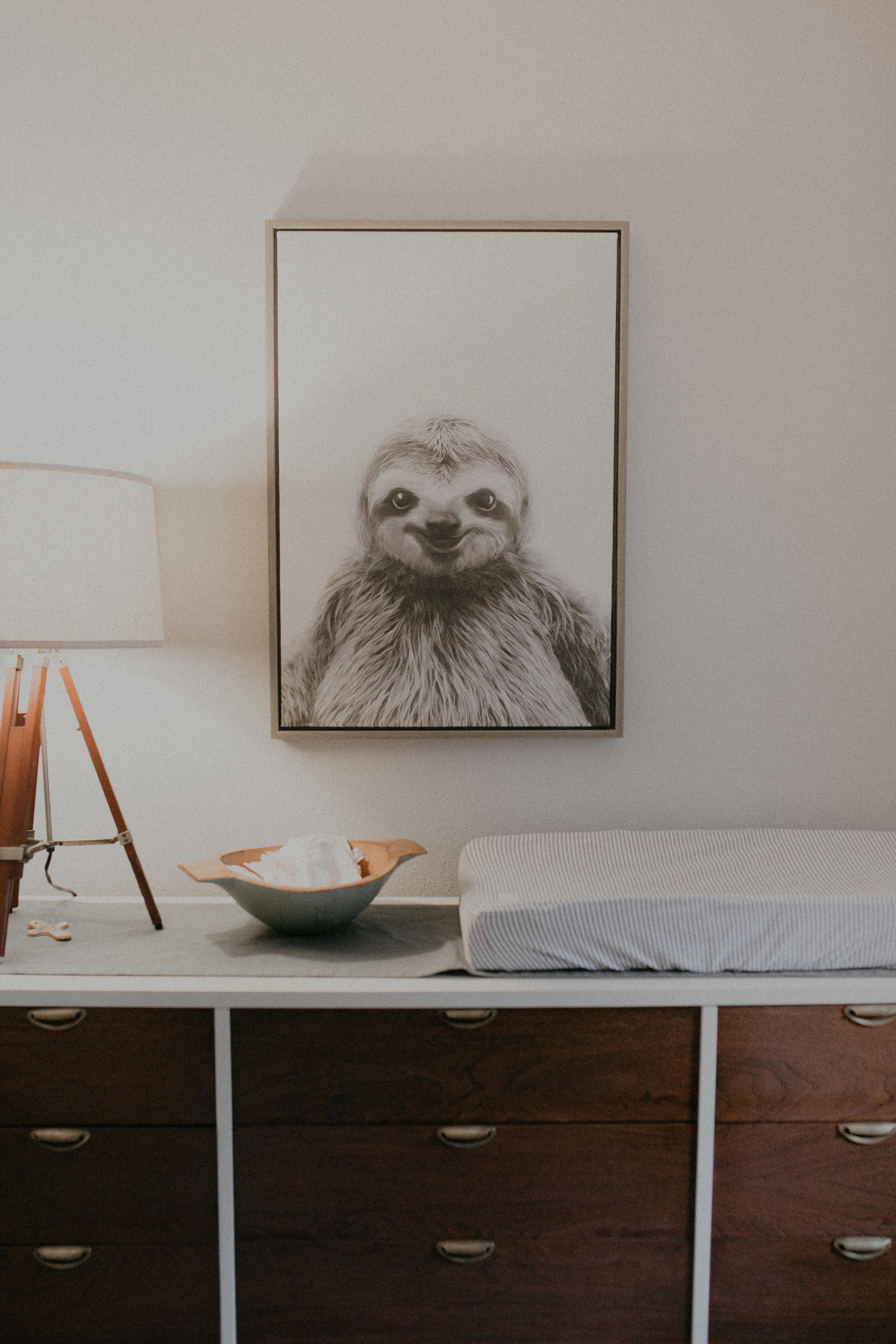 sloth-nursery-river-falls-lifestyle-photographer