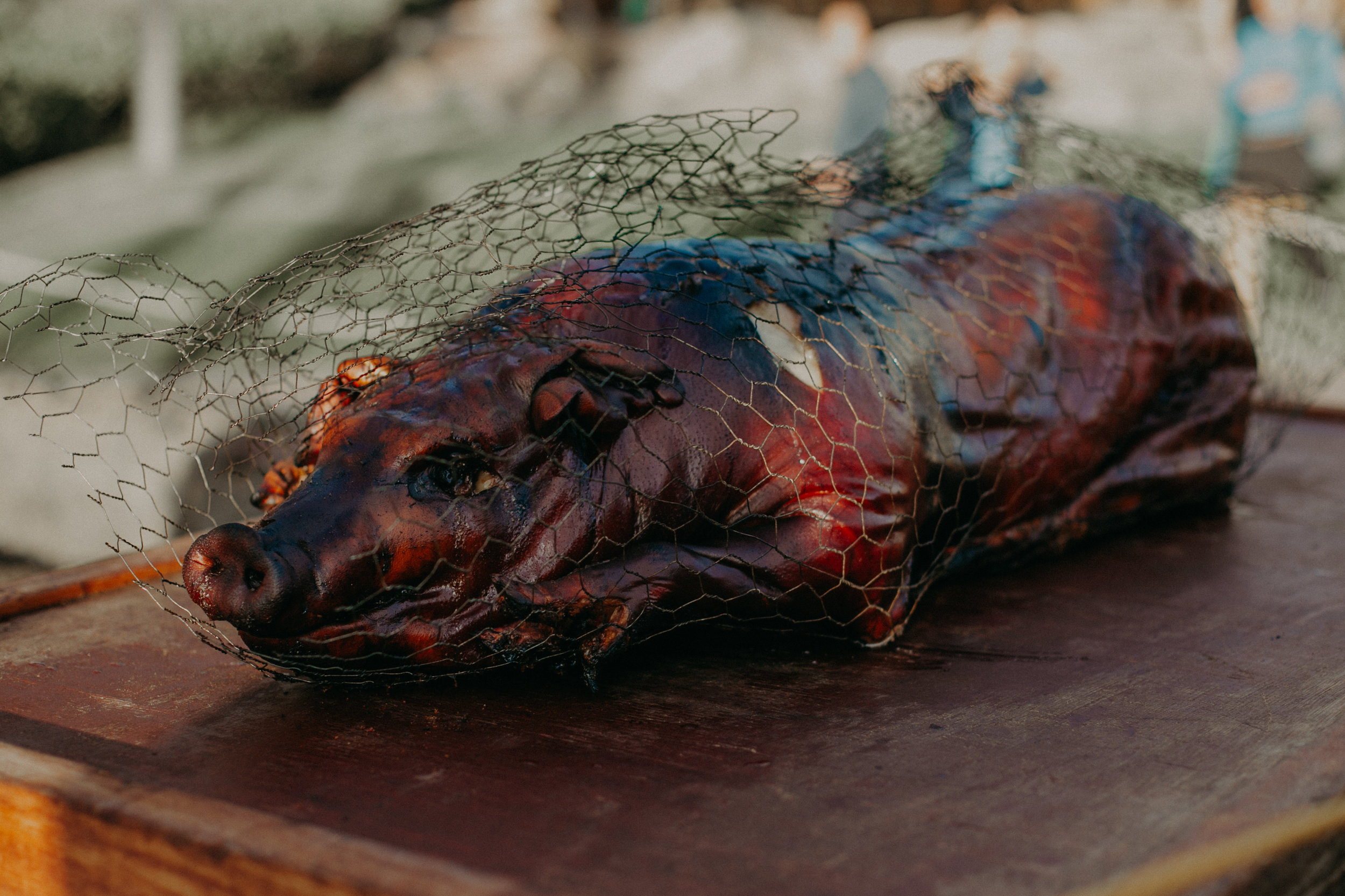 a roasted pig lays on a table at a luau on the island of maui at Grand Wailea