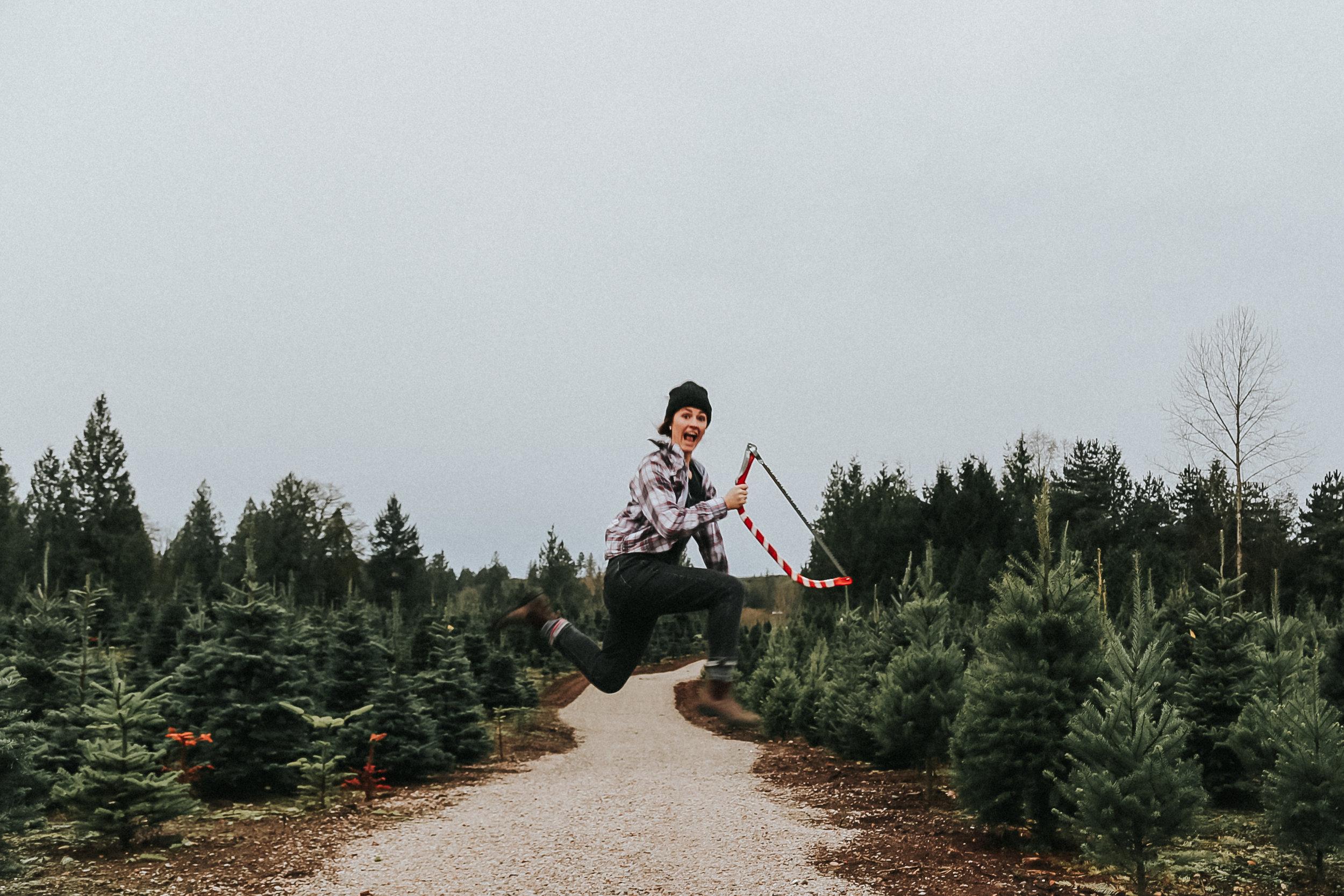 christmastree-7.jpg