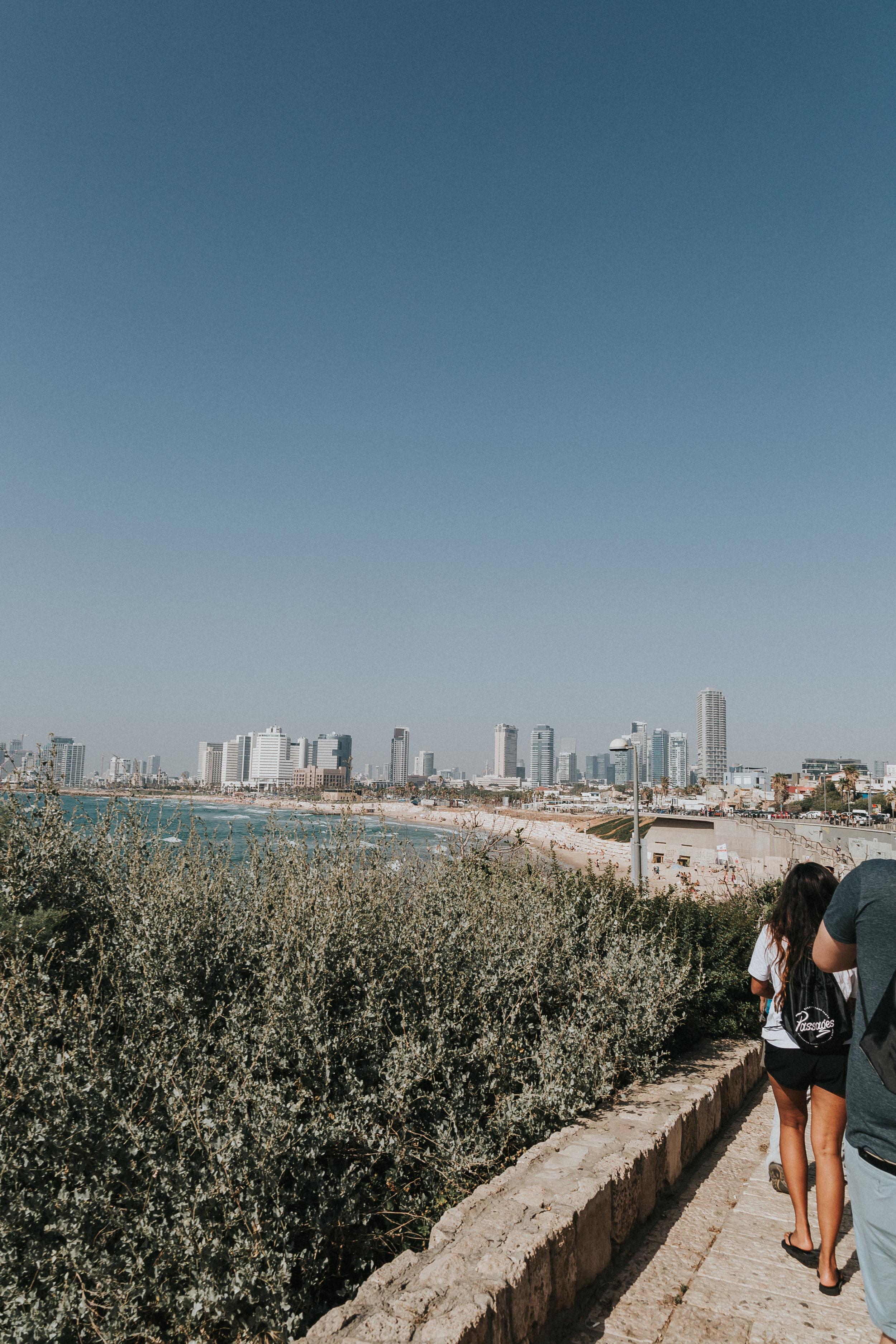 israeledits-1.jpg